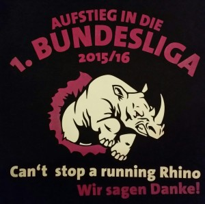 Can't stop a running Rhino.